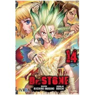 DR STONE 14